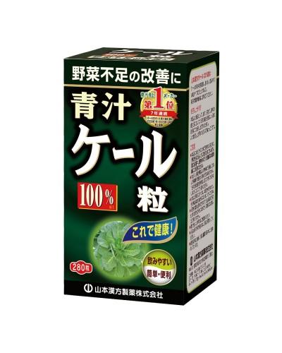 100% Kale Leaf Tablet